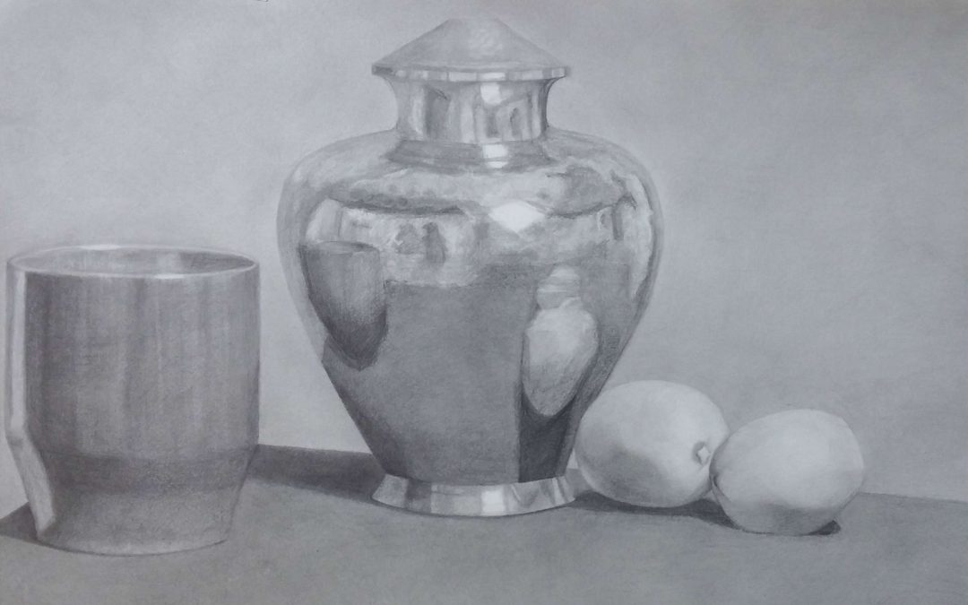 LIGHT & SHADE: drawing with sensitivity & accuracy (3rd-7th grade)